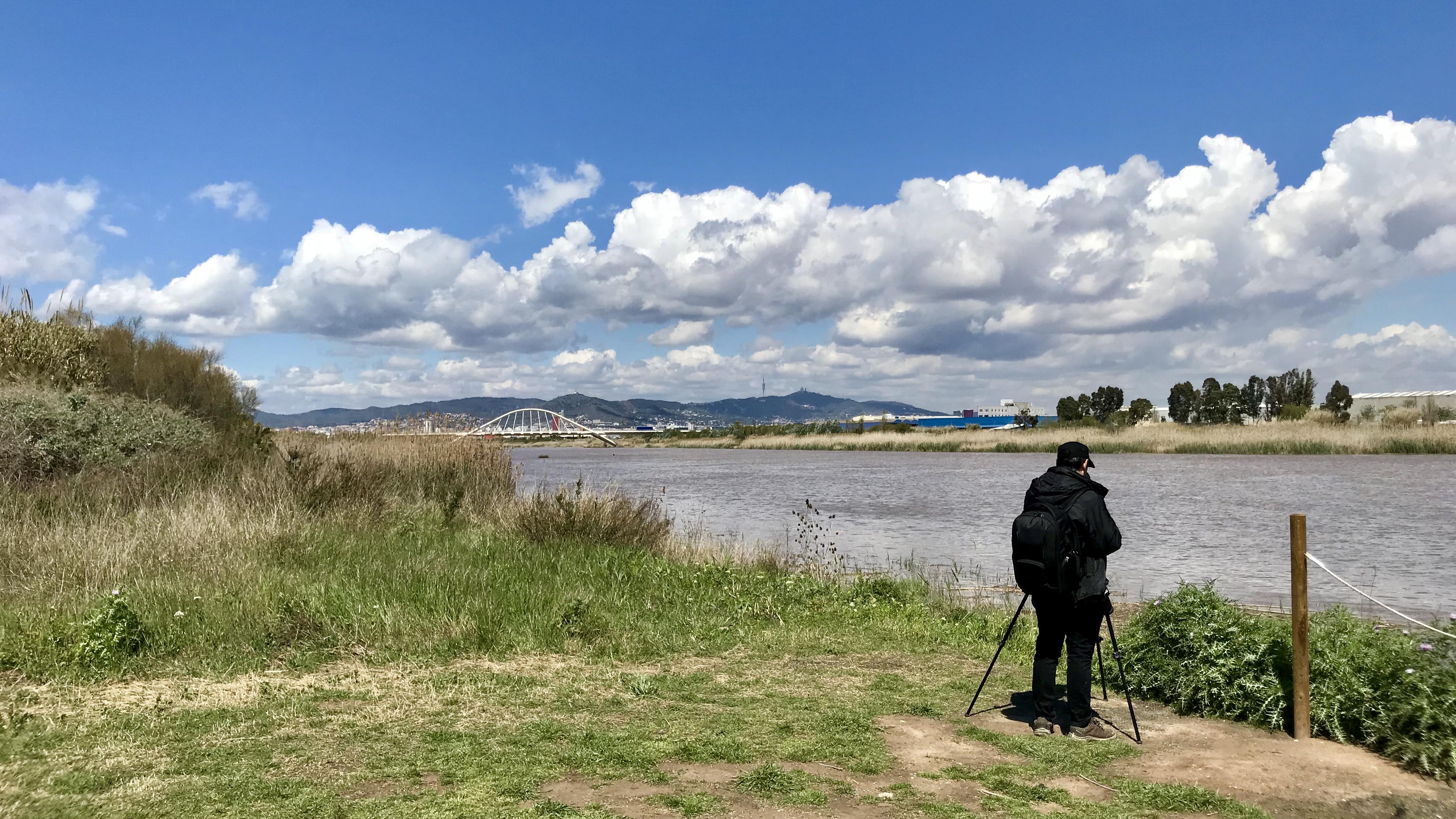 Birdwatcher observando las aves del Delta del Llobregat