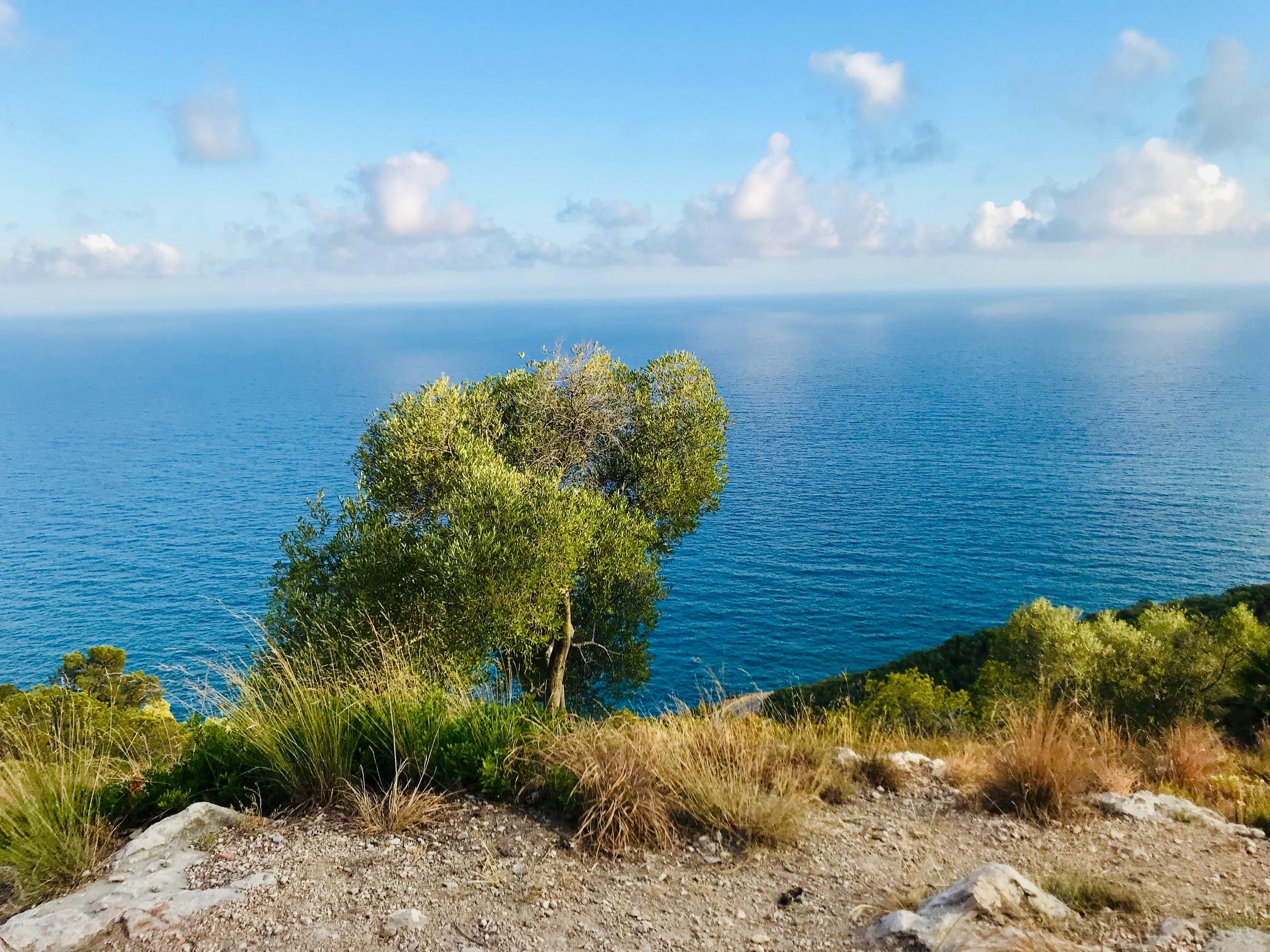Vistas desde el tren camino de Sitges, turismo de proximidad